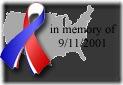 9-11Ribbon