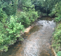 Cross Creek--looking upstream toward Green Street, Fayetteville, NC