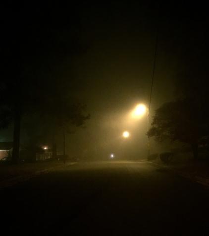 foggy night ~ 11/12/2014