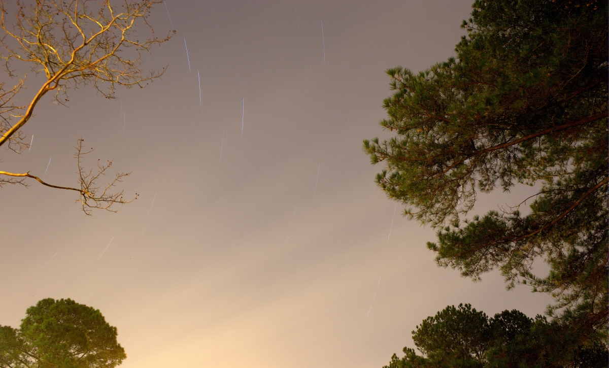 Astrophotography ~ Star Trails Favorite, 12/14