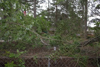 Looking east, southeast at debris, fencing, and netting