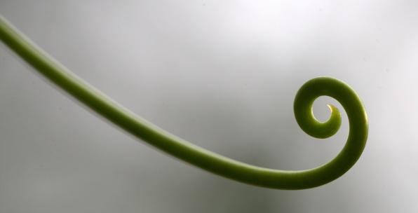 Day 18--Spiral