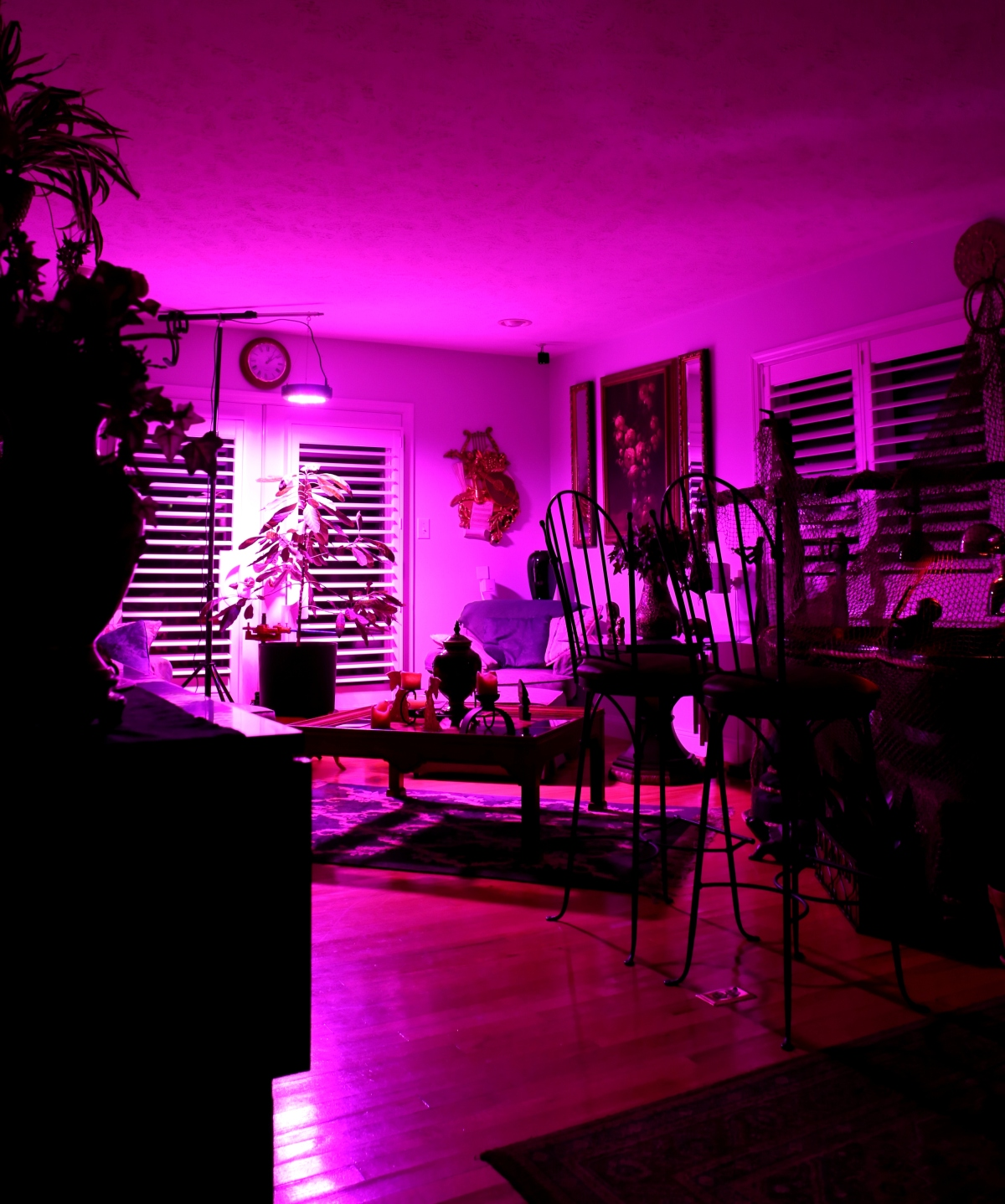 Photography ~ The glow of a grow light after dark, 09/29