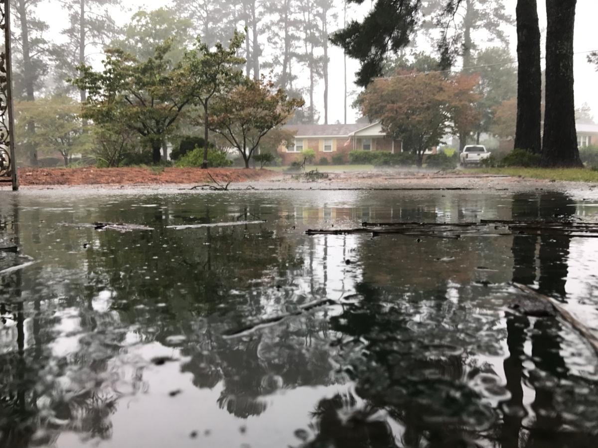 Storm ~ Hurricane Matthew, Fayetteville, North Carolina [a glimpse], ~ 3:00 pm,10/08