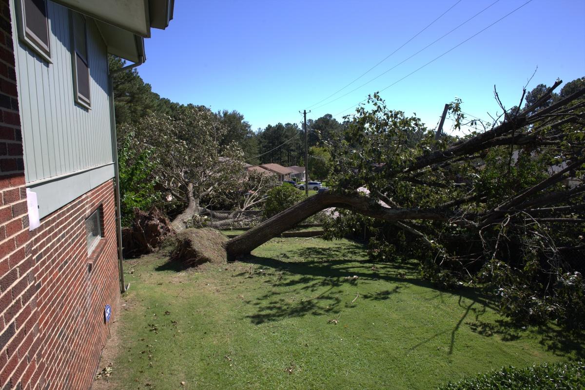 Storm ~ Hurricane Matthew, Fayetteville, North Carolina [a neighbor's damage],10/08