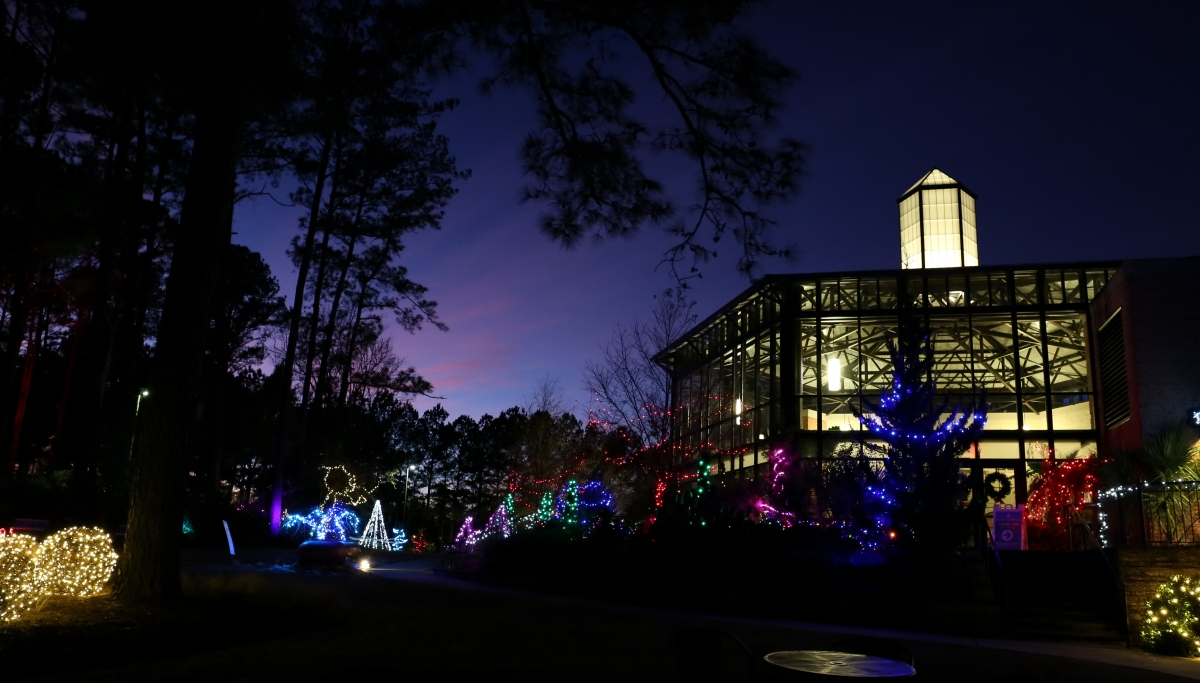 Event ~ Holiday Lights in the Garden 2016, Cape Fear Botanical Garden, Fayetteville, North Carolina, 12/15