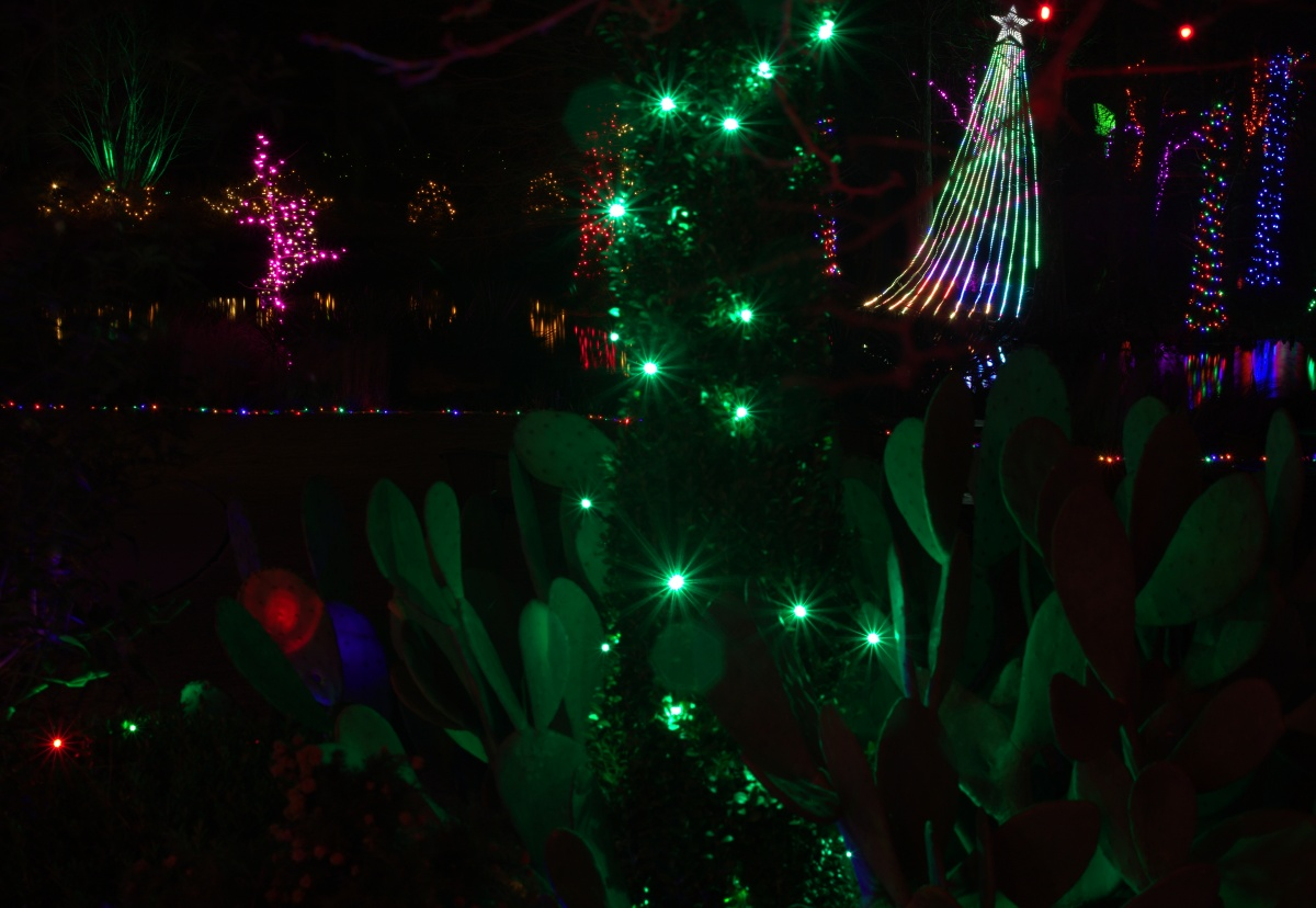 Flickr Tops ~ Holiday Lights in the Garden 2016, Cape Fear Botanical Garden, Fayetteville, NC,12/18