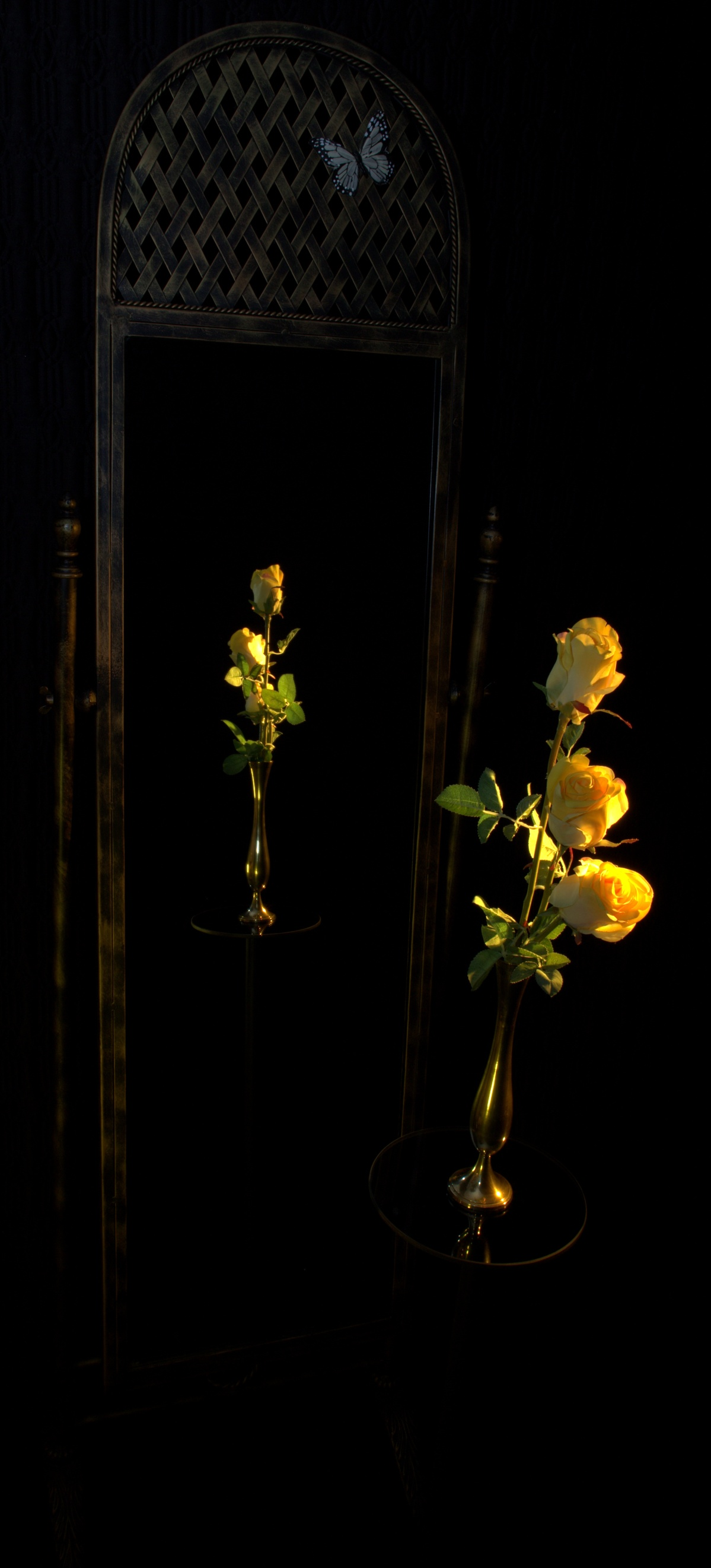 Photography ~ Still Life-3 Yellow Roses, 01/28