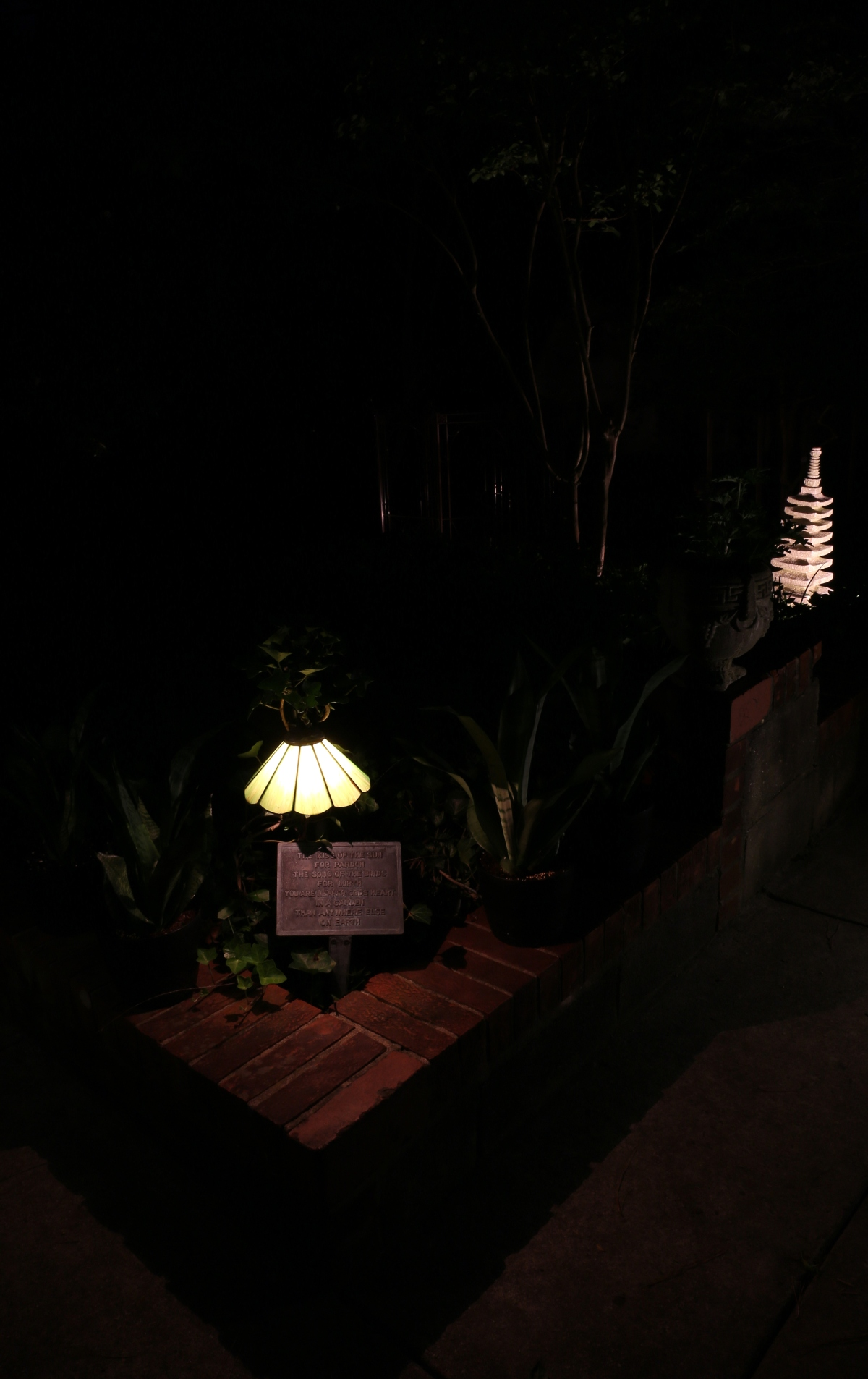 Photography ~ A Corner of the Garden–After Dark, 06/06