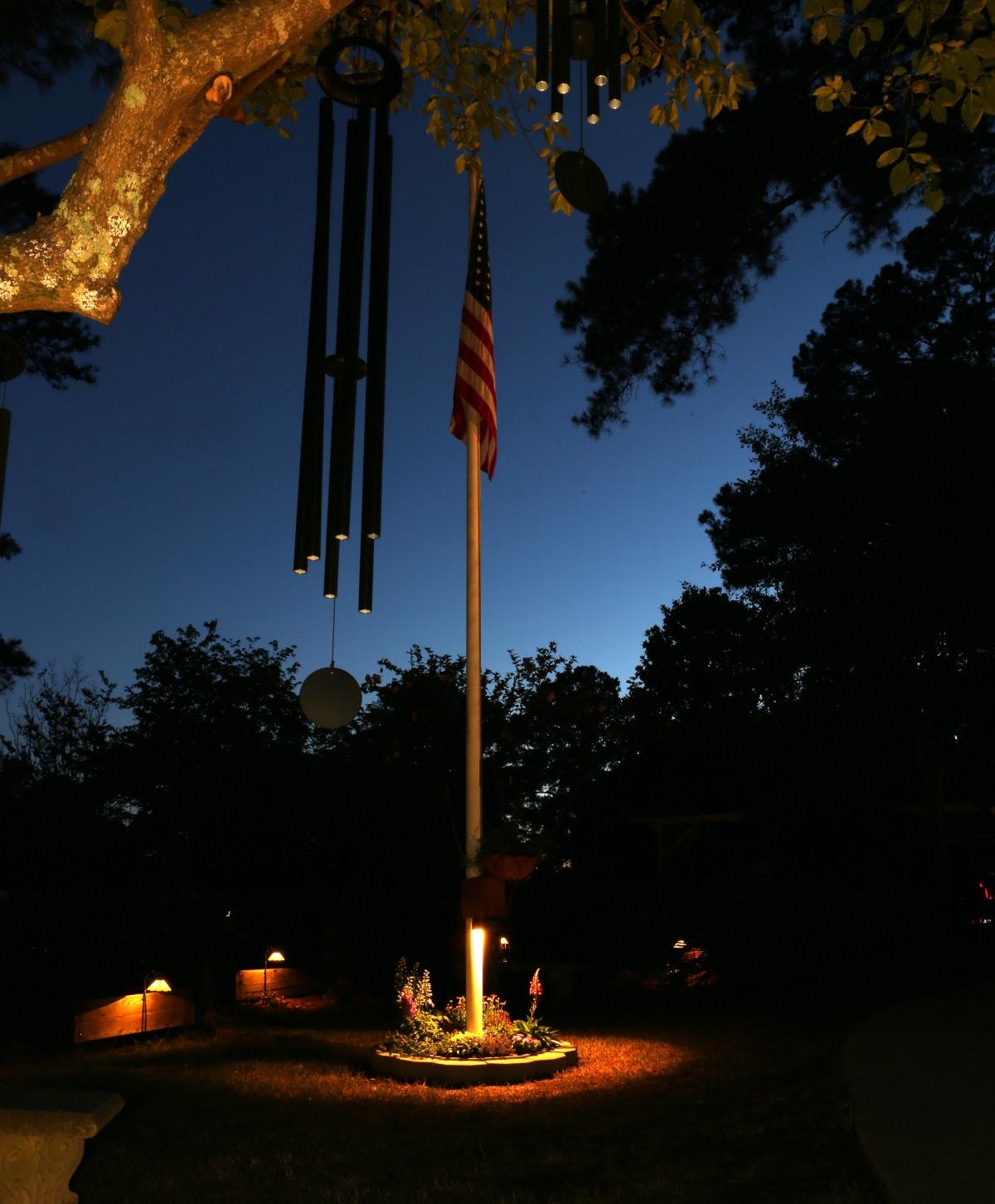 Photography ~ Backyard–Good Evening, America,06/08