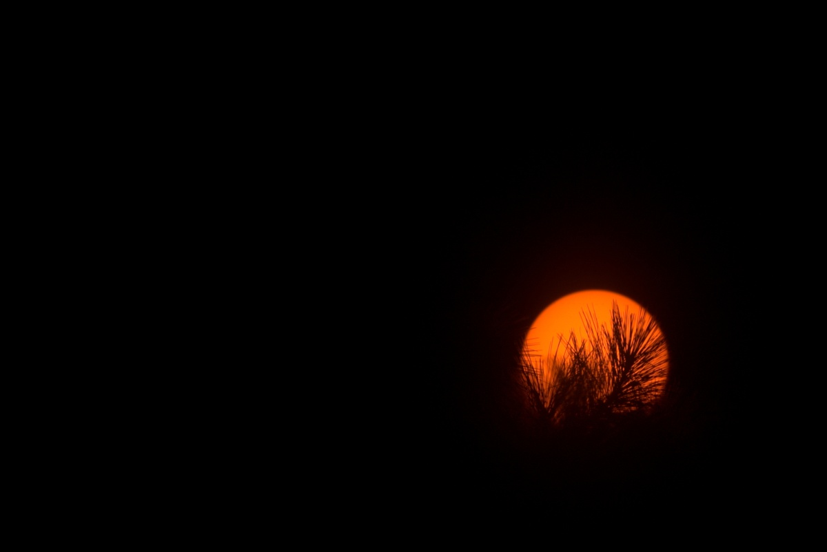 Photography ~ The Sun & the Moon, Fayetteville, North Carolina–400mm Super Telephoto, 07/31
