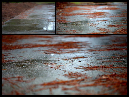 DIY [#31] ~ Rain Cover–CamRanger System,10/07