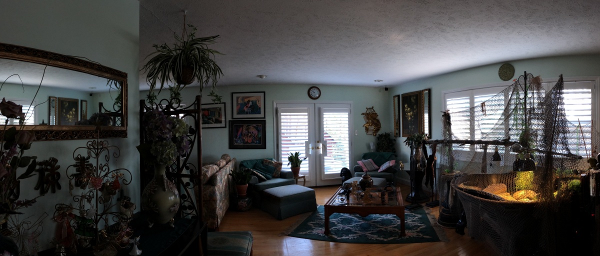 Photography ~ Home–Interior, iPhone X 3X3 Panorama Trial with DJI Osmo Mobile, 12/13