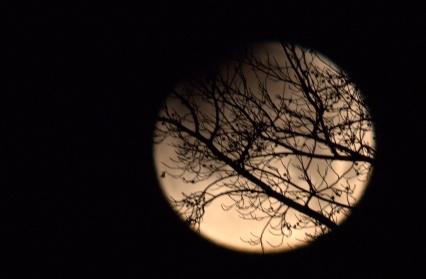 After the Total Lunar Eclipse began--6:53 am EST