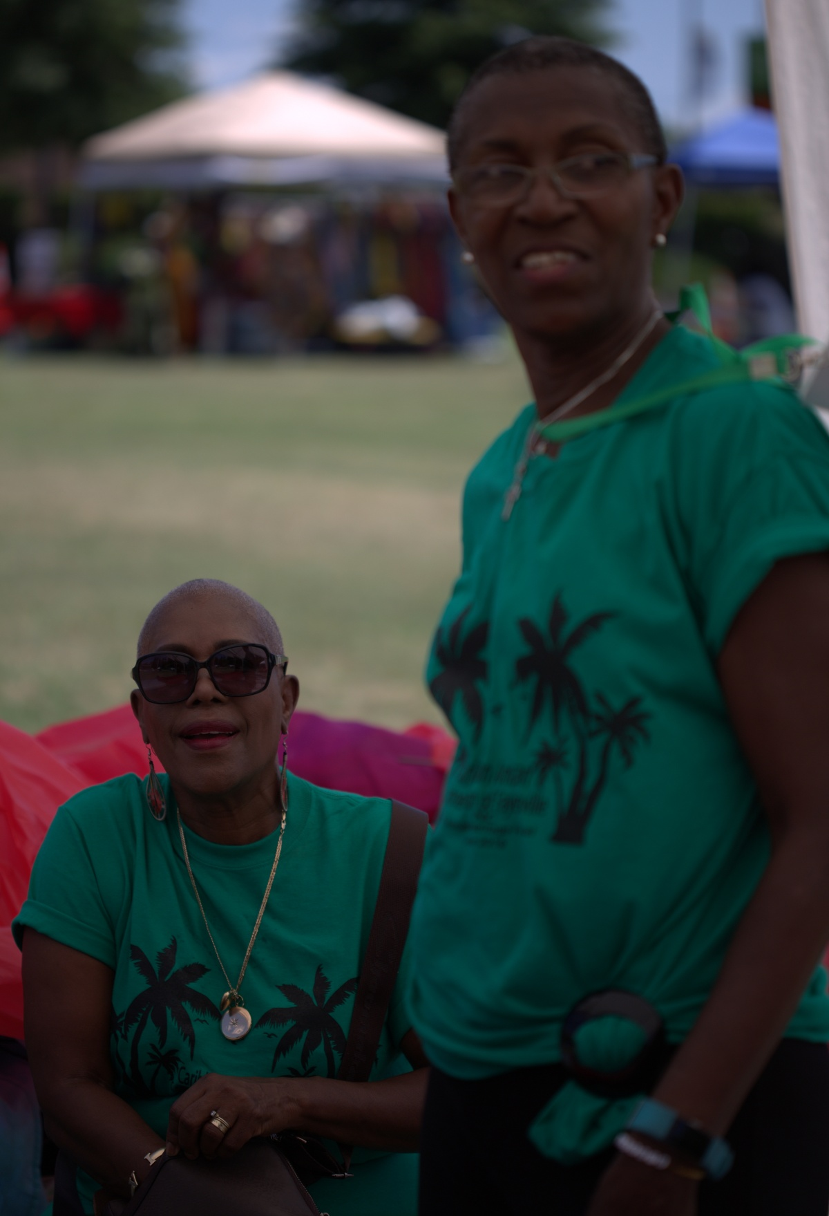 Photography ~ Flickr Album of the 8th Annual Caribbean Heritage Festival Photo Shoot is published– 06/25