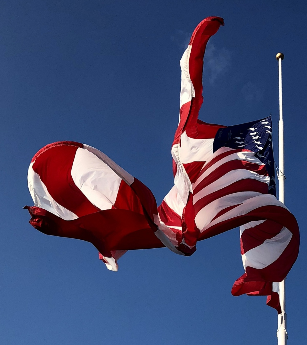 Tribute ~ Around the Nation, the U.S. Flag is being flown at half-mast in honor of Senator John McCain, 08/28
