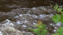 Cross Creek within the Cross Creek Park, Fayetteville, North Carolina