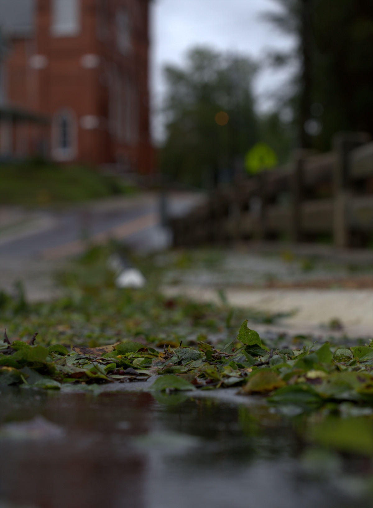 "Photography ~ ""Florence,"" 2 Days after its onset of Fayetteville, North Carolina, 09/16"