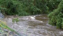Cross Creek approaching the N. Cool Spring Street Bridge, Fayetteville, North Carolina