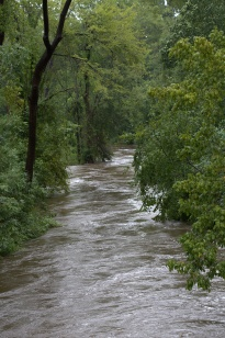 Cross Creek after flowing beneath the N. Cool Spring Street Bridge on its way to the Cape Fear River, Fayetteville, North Carolina