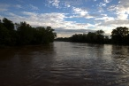 The Cape Fear River at 60-feet or so [looking southwest toward Person Street Bridge]