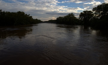 The Cape Fear River at 60-feet or so [looking south at the Person Street Bridge]