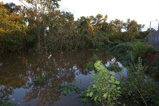 Cross Creek just north of Grove Street